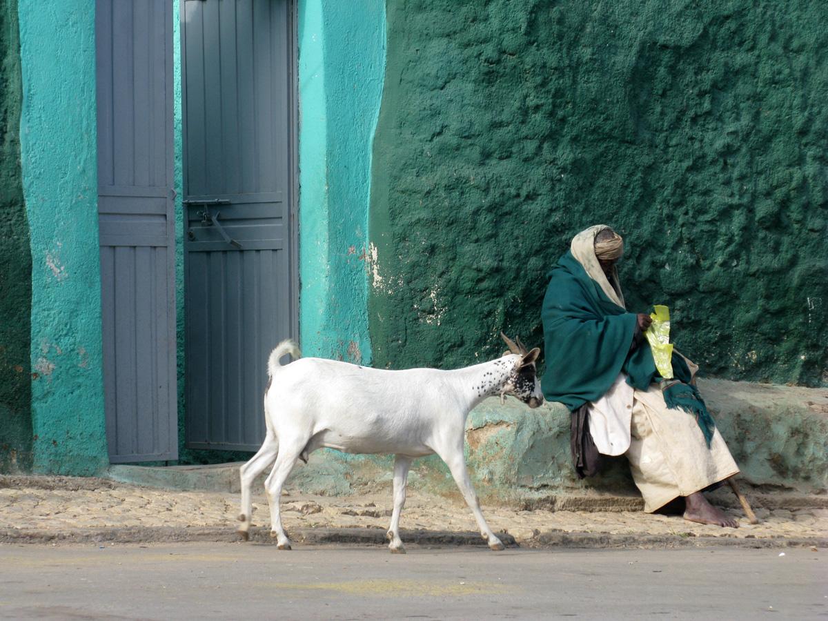 Ethiopie_ph_02_Harar_316