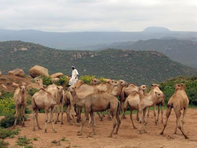 Ethiopie_ph_04_Babile_017
